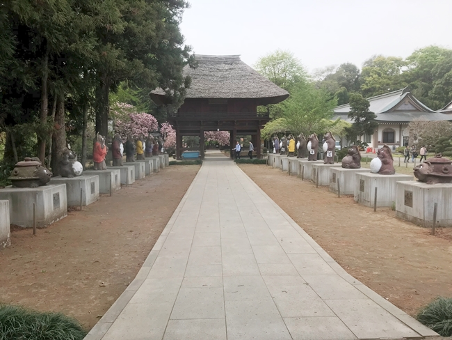 茂林寺の参道脇のタヌキの像