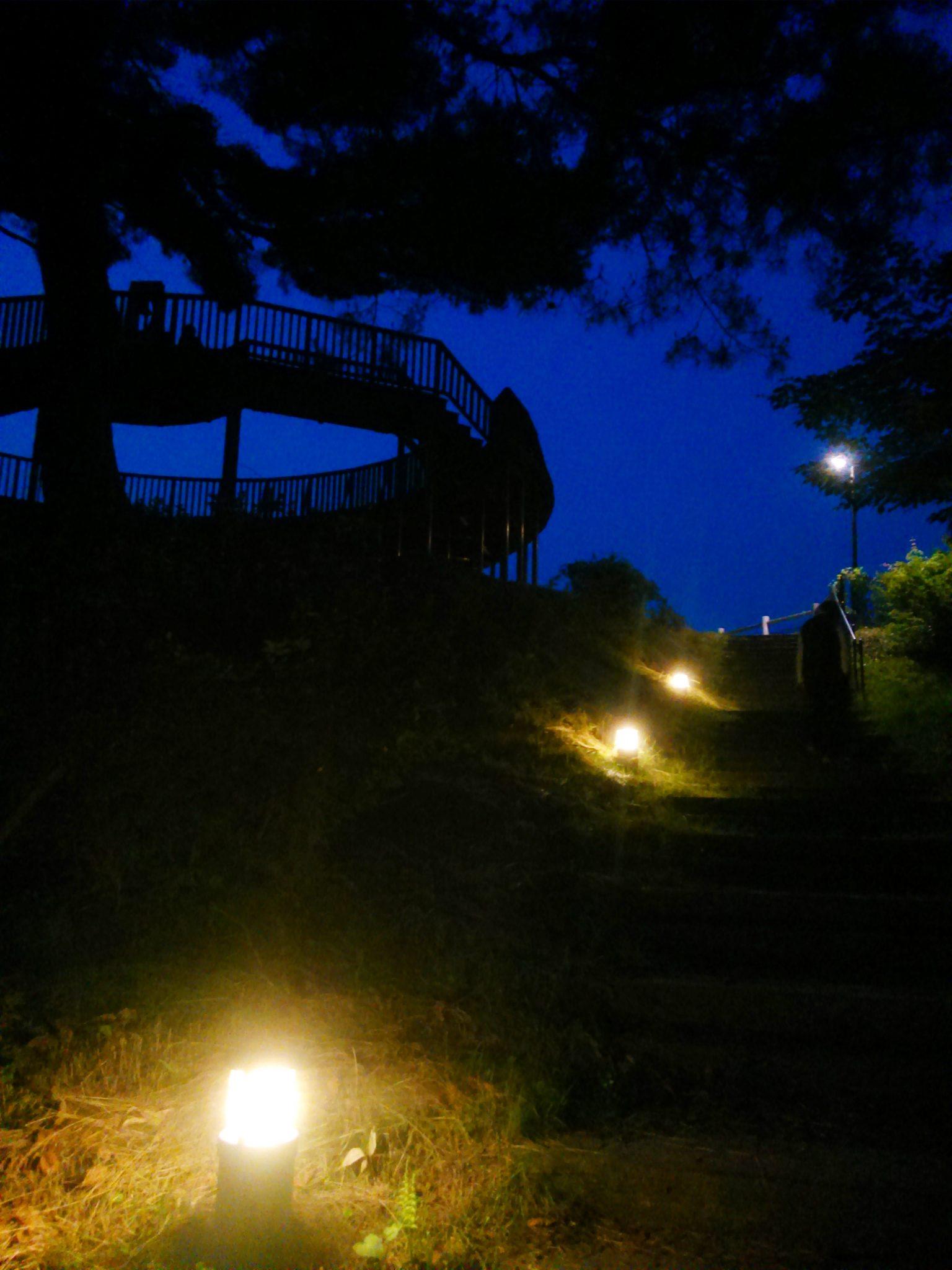 遊歩道のライト